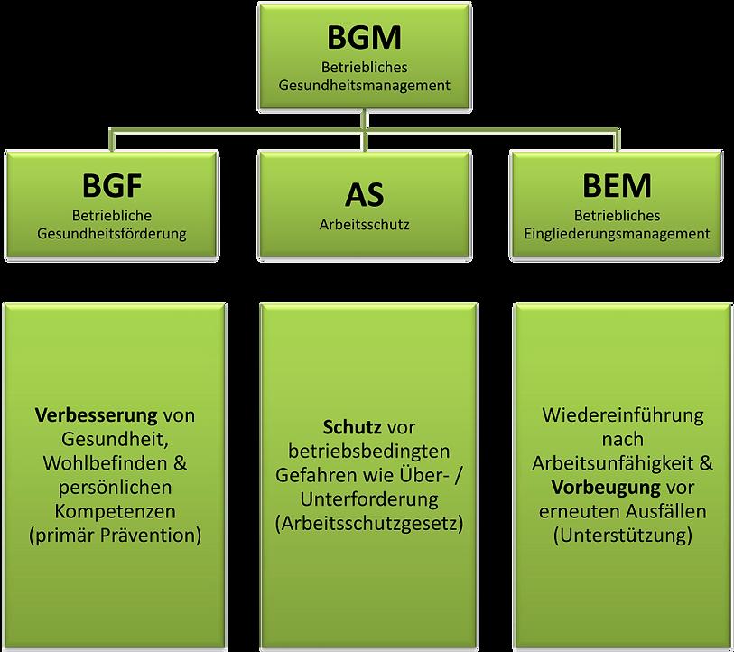 POM BGM / BGF