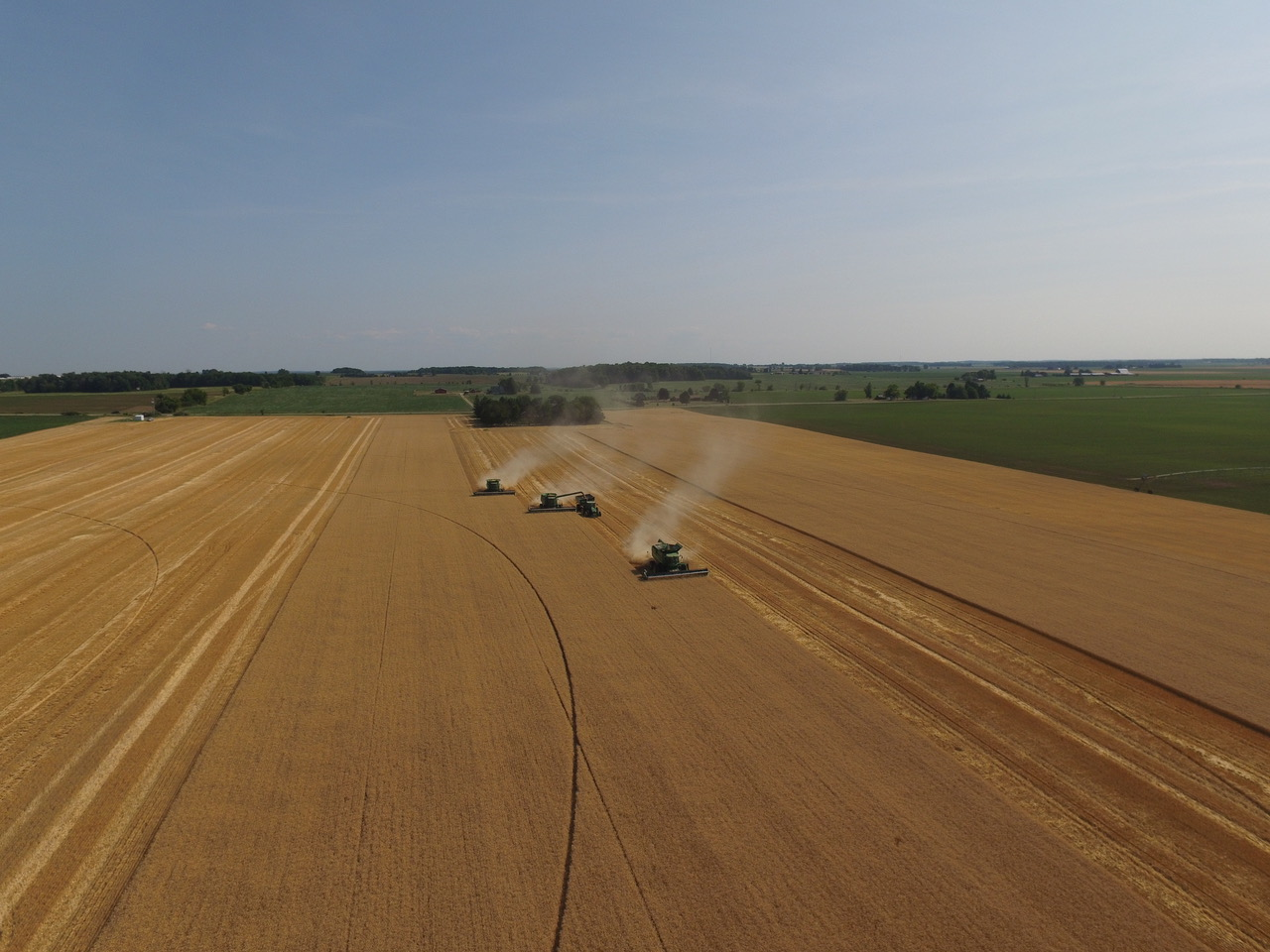 Drove view of Clearwater Farms harvesting!