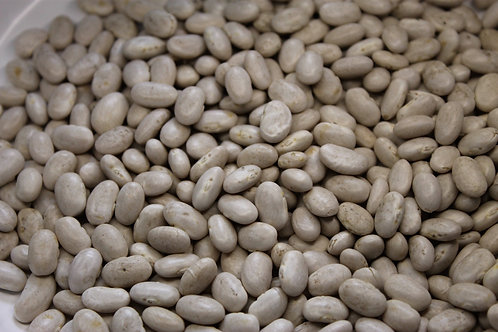 Organic Great Northern Beans (25lbs)