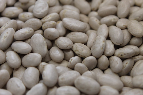 Organic Great Northern Beans (10lbs)