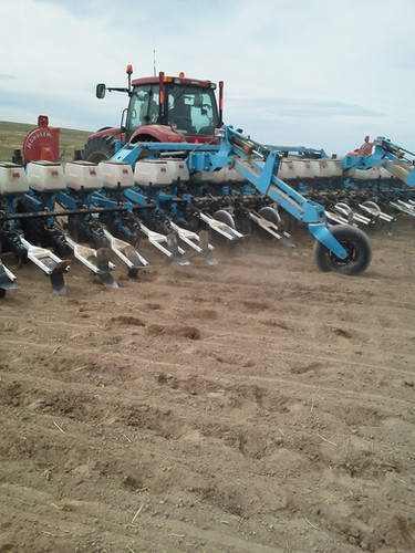 Culti-Dikers in Sugar Beets