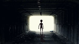 Are aliens real and what would they be like?