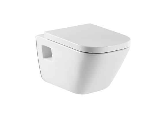 Roca toilet bowl. Gap.