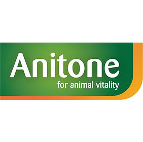 anitone_logo.jpg
