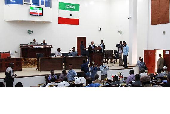 SomalilandBanner_edited.jpg
