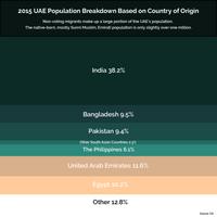 UAE Slide 5