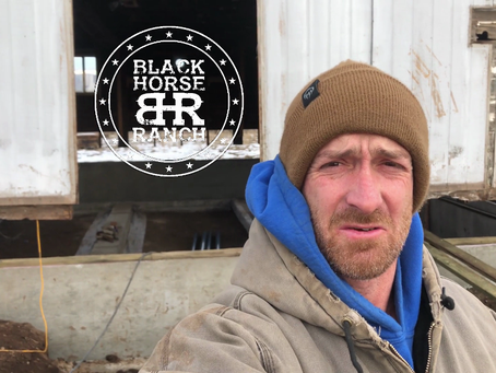 Historic Guest Barn Renovation - Episode 6, Setting it Down