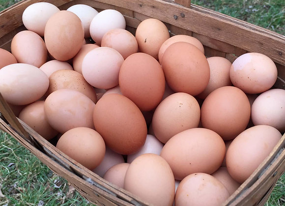 Farm Fresh Pastured Eggs