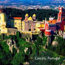 Pacia Portugal.jpg