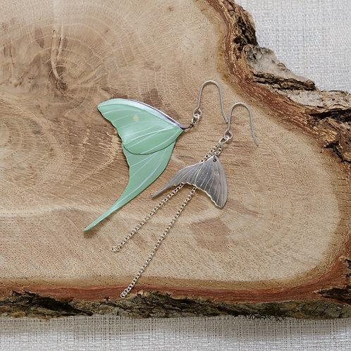 Moth earrings (Actias gnoma)