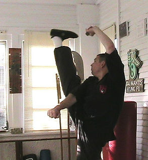 Northern-style kung-fu