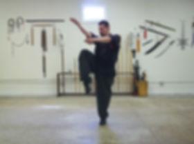 Tai Chi Praying Mantis kung-fu
