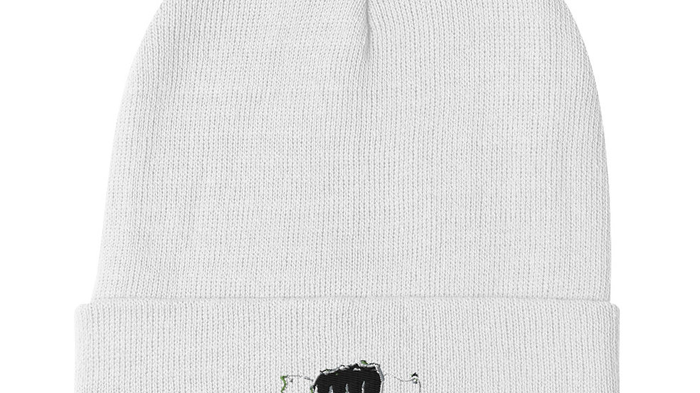 $CASH$ (Full) Embroidered Beanie