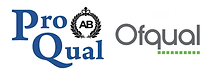 ofqual-and-proqual.png