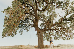 Bride & Groom on a swing