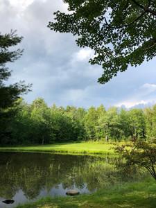 Wheaton Pond