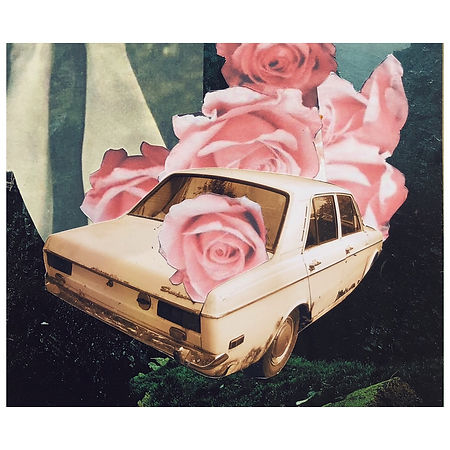 Carro Rosas Collage.jpg