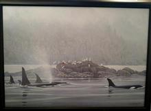 Orca Procession
