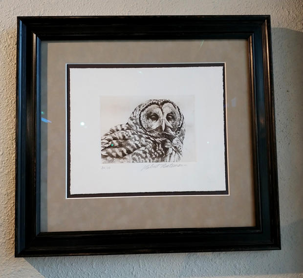 Owl Lithograph