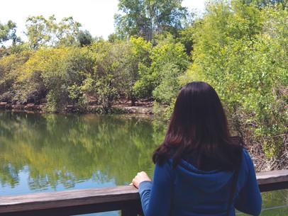 The Nature Center at El Dorado Park