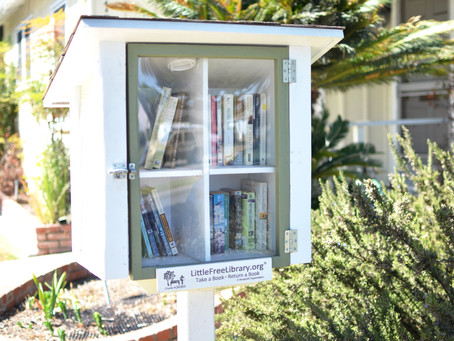 Sharing the Love of Reading Through Free Libraries