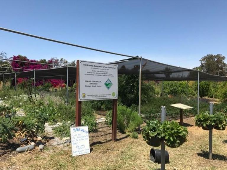 3 Urban Farms You Didn T Know Were In Long Beach