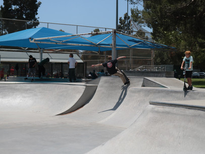 The Doe And Other Skateparks