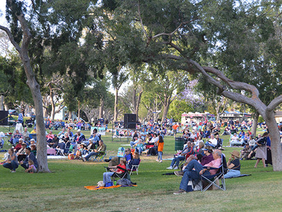 Concert In The Park: The Ultimate Survival Guide