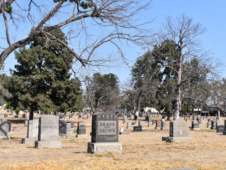A Graveyard Full of Life