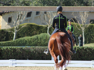 Physio for Riders - horse and rider