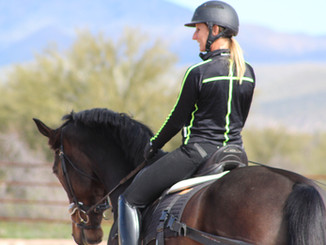 Physio for Equestrians - Horse and Rider