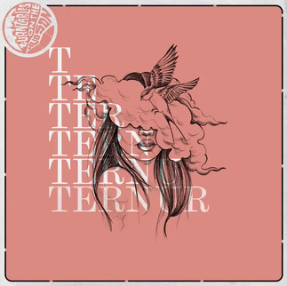 Ternura Album