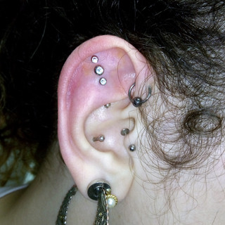 Outer Conch x 3 (from £20 each)