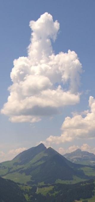 Castelanus.png