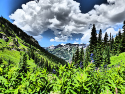 High Country hikes