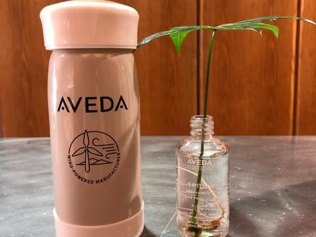 今ならアヴェダマイボトルプレゼントしてます!