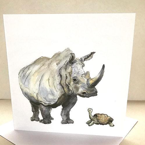 Rhino and Tortoise
