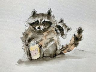 Rascal Raccoons!