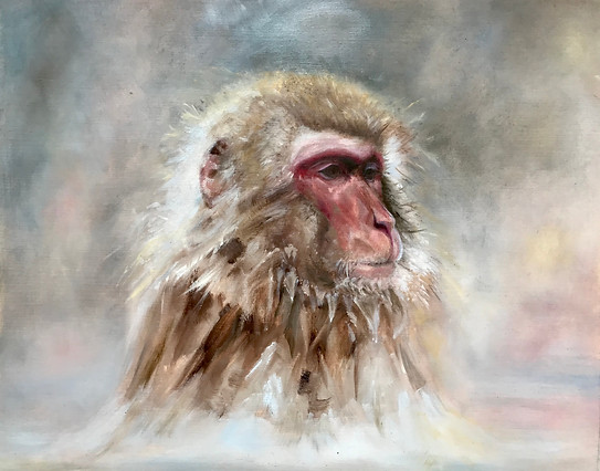 'Snow Monkey'