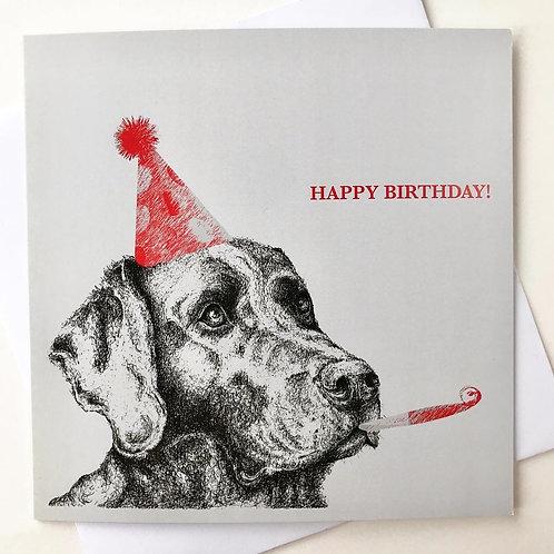 Happy Birthday Lab!