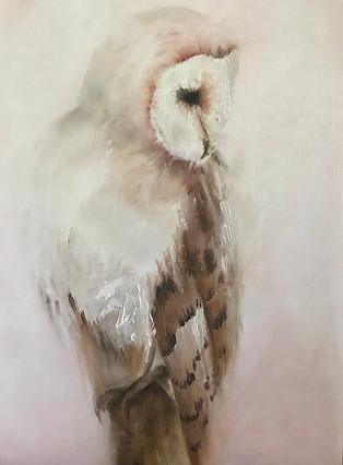 Twilight Owl
