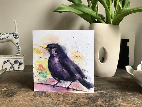 Summertime Blackbird
