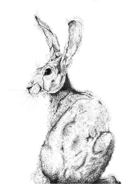 Turning Hare