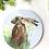 Thumbnail: Hare Coaster (Blue)