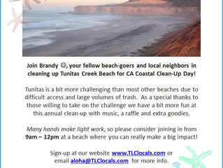 CA Coastal Clean-Up Day