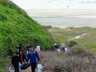 HAPPY 2019 - Tunitas Beach Clean-Ups