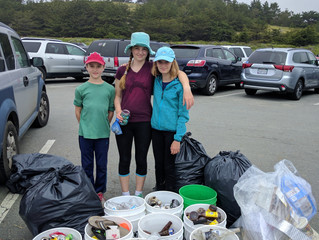 'MAY we be of service' totals for San Gregorio Beach 5/21/17