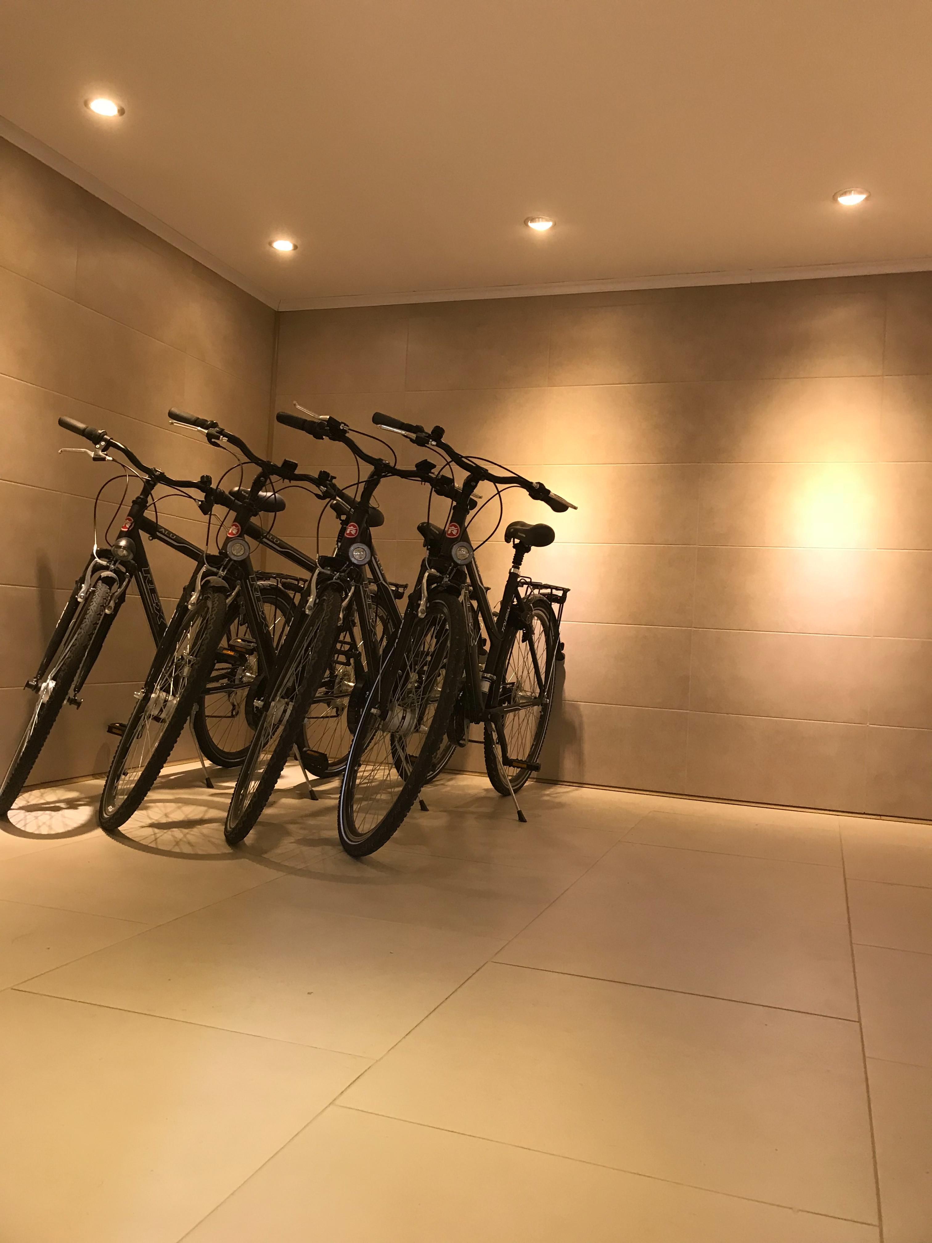 Прокат велосипедов ( бесплатно )