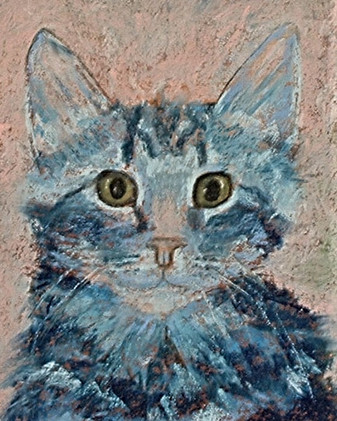 Cat Blue_1
