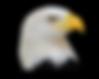 eagle_head.PNG